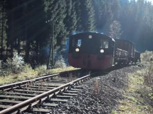 die Köf II mit den drei historischen Güterwagen passiert unsere Arbeitsstelle